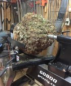 chestnut oak burl.JPG