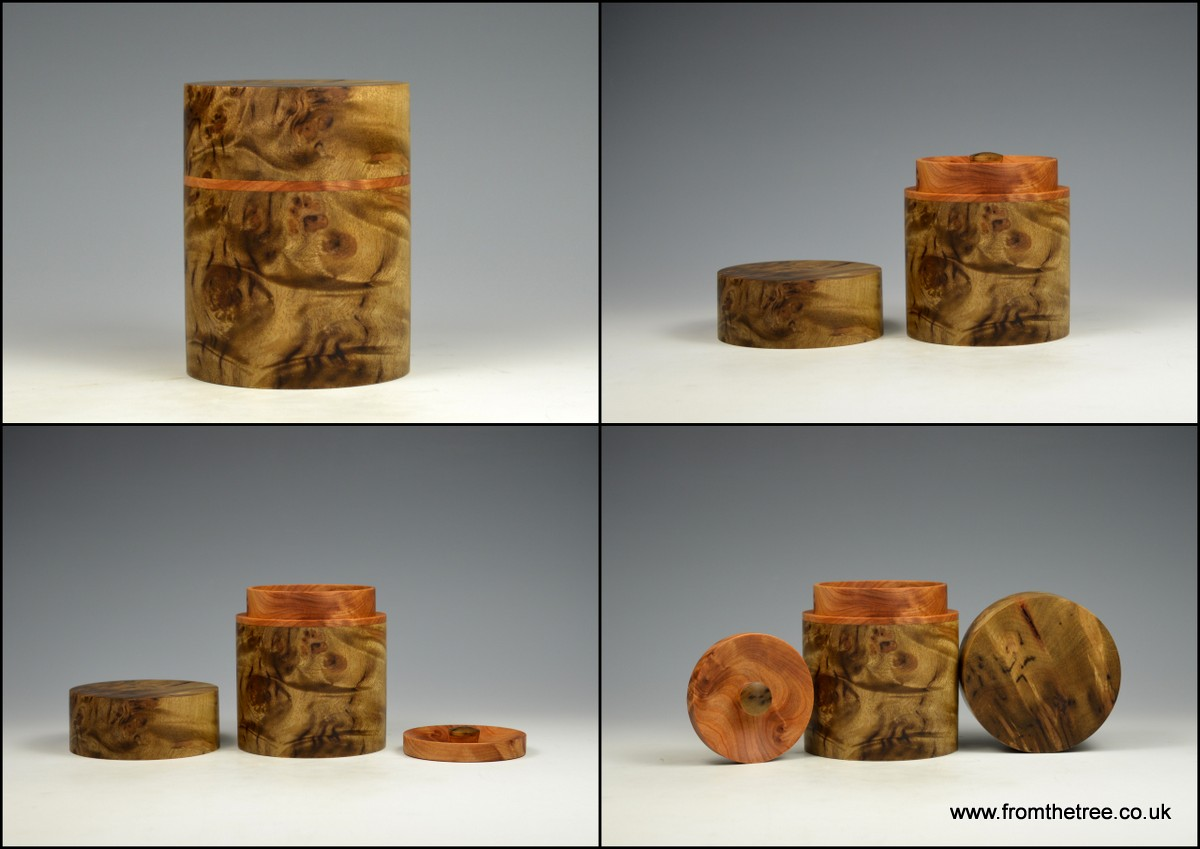 Golden Madrone Box with thuya burr